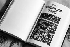 Kovbojové v knížce