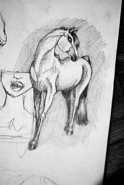 Skica-koňská